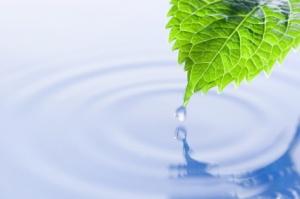 Девет ритуалa за повишаване на вашата осъзнатост, които  да подобрят денят ви