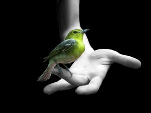 41 неща, които определено ще разнообразят живота ти - 2 част, Духовност