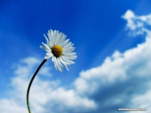 Урок по ЛЮБОВ №11 - Днес избирам да напусна КЛУБА на вечно отлагащите!!!!!