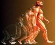Mastermind Party : Homo ludens или Играещият човек.