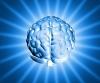 Съзнанието и квантовата физика